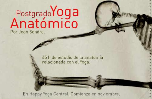 yoga-anatomico